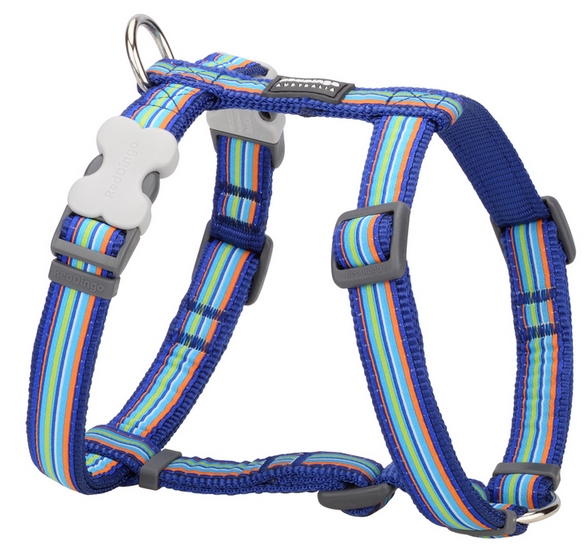 Red Dingo Blue Stripe Dog harness