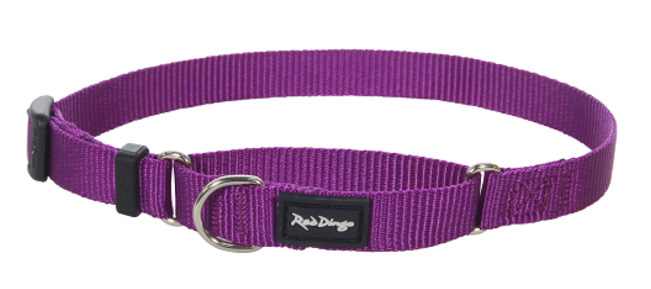 Purple Dog Leads Uk