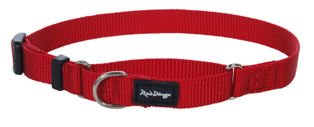 Red Dingo Dog collar Half Check (Martingale) Collar Classic Red